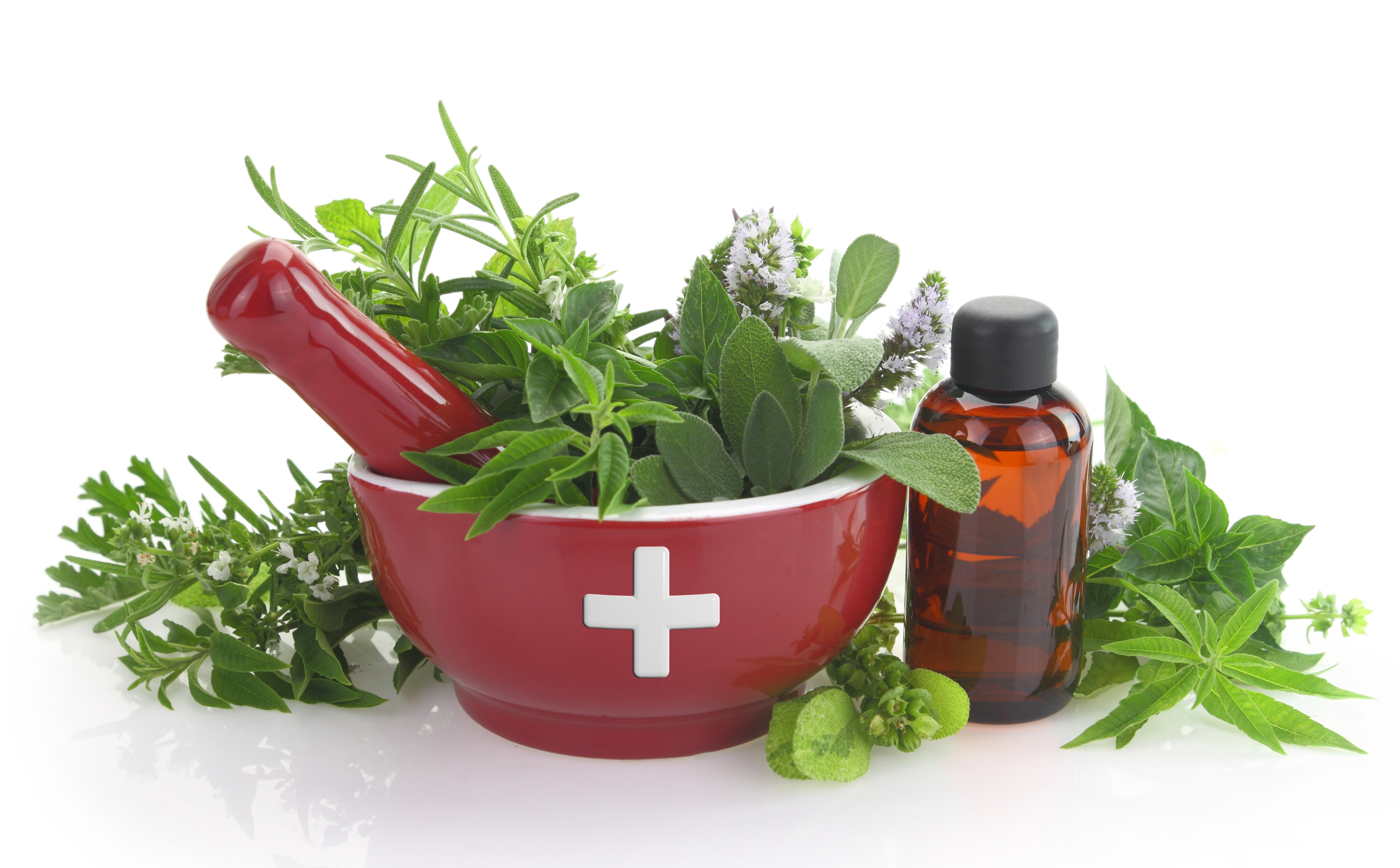 Complementary Plant Medicine Therapy